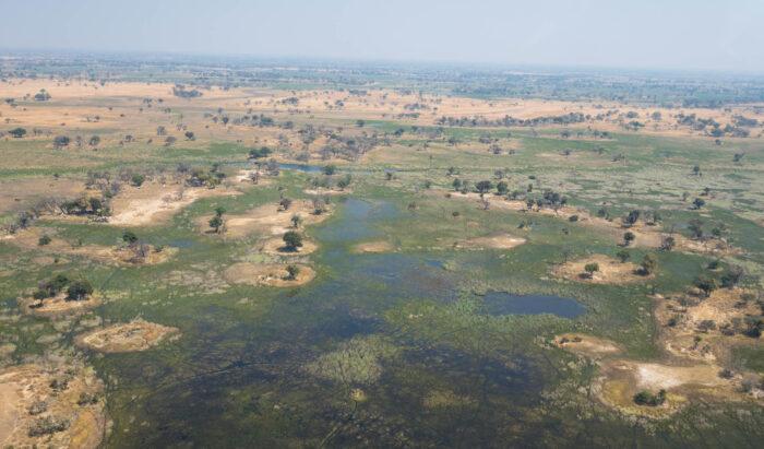 The Okavango Delta: Africa's Garden of Eden.